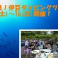 海の日!ダイビングツアー