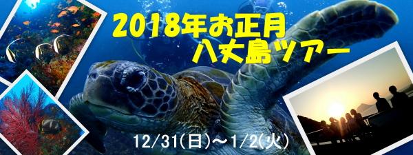 2018お正月八丈島ダイビングツアー