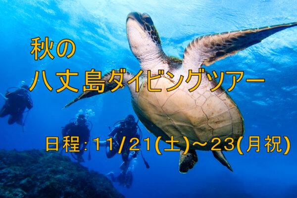 富戸ダイビングツアー2020/9/6(日)