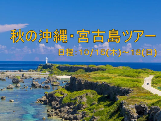 宮古島ダイビングツアー