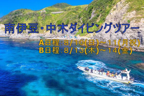 北川ダイビングツアー2020/6/29(月)