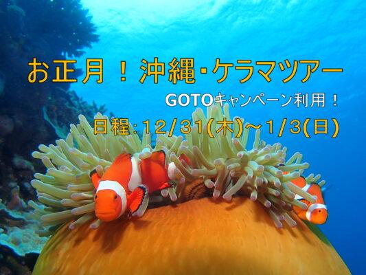GOTOキャンペーン利用 お正月沖縄本島&ケラマダイビングツアーのご案内