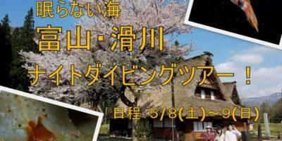 富山・滑川ナイトダイビングツアーのご案内