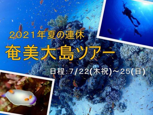 海の日開催!奄美大島ダイビングツアーのご案内
