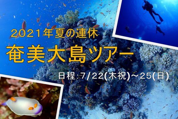 初島ダイビングツアー2017/8/6(日)
