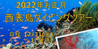 2022年お正月開催 西表島ダイビングツアーのご案内