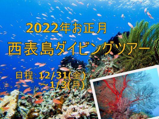 2022年お正月開催|西表島ダイビングツアーのご案内