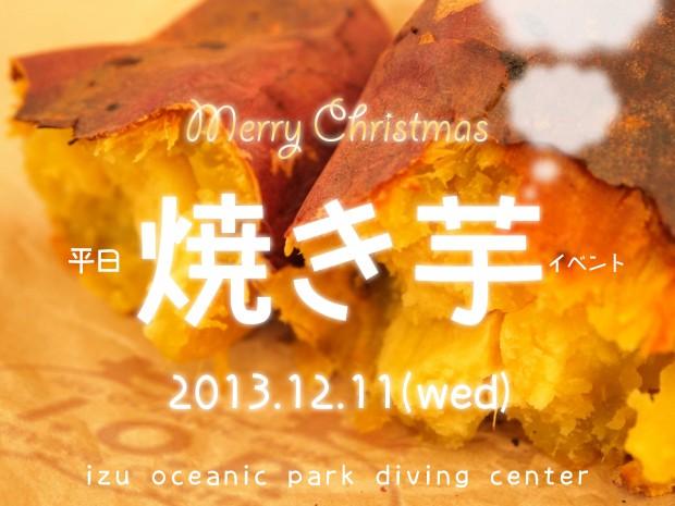平日イベント開催! 海洋公園ダイビングツアー!!